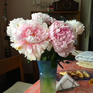 Vlad'ka's beautiful peonies