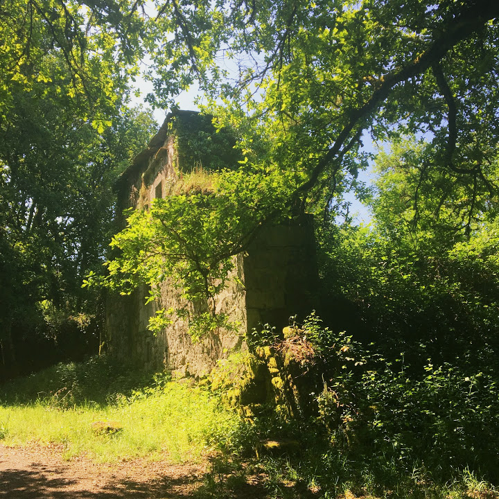 An abandoned stone building from an abandoned medieval village on the complimentario route. Oh, the gothic stories that could be spun from this inspiration!