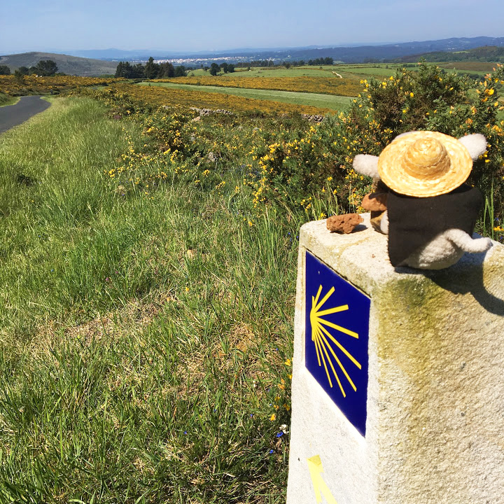 Felipe surveys the view on top of a Camino marker. In the distance is Melide, our next destination.