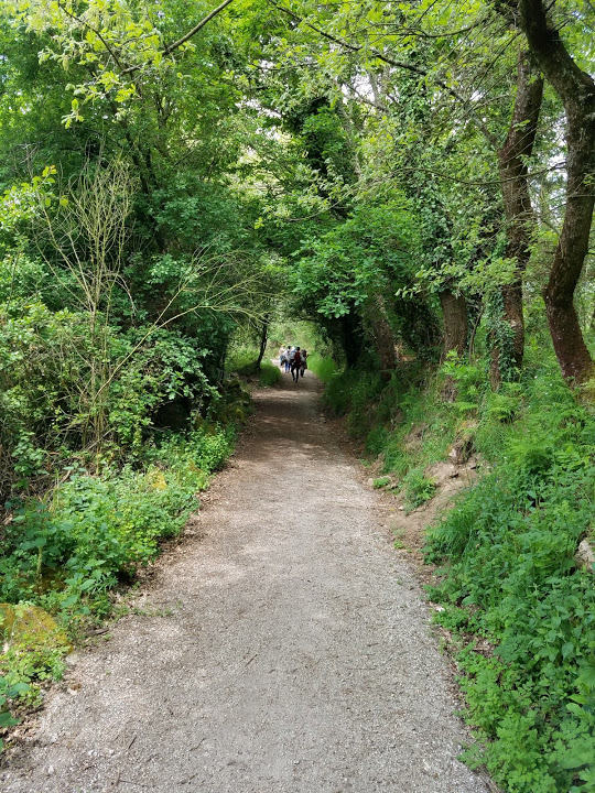 Much of what we walked through was a tunnel of greenery.